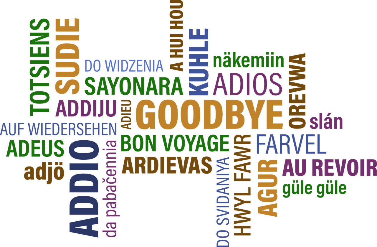 """Text saying """"Goodbye"""" in many different languages, in different colors."""